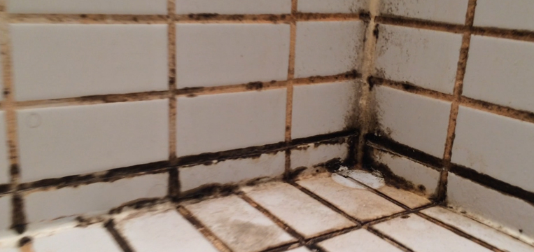 Cost To Regrout Tile Shower Home Renovation Deals Canada - Cost of regrouting